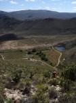 Simonskloof - from buchu koppie trail