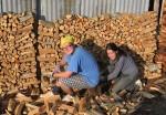 Polish-Kiwi wood piling